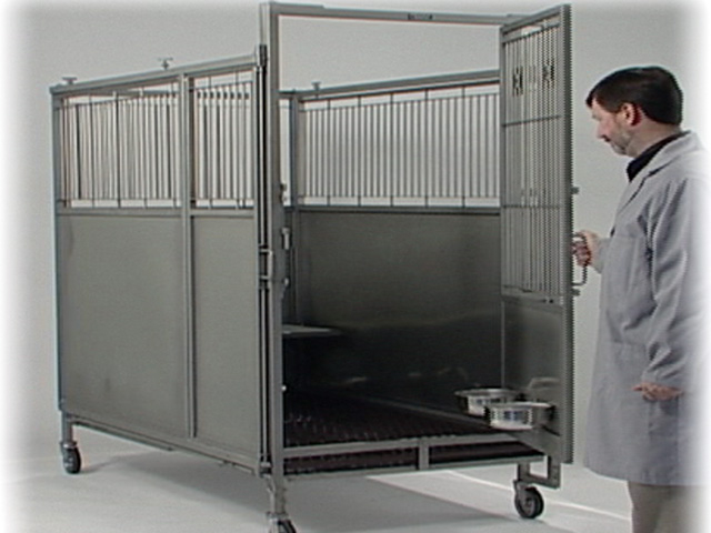 Dog Cage Kennels With Modular Design To House Other Lab
