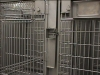Primate Enrichment Systems 11